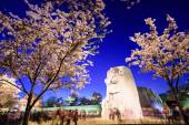 Martin Luther King Junior Memorial — Stock Photo