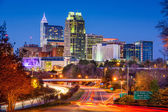 Raleigh North Carolina Skyline — Stock Photo