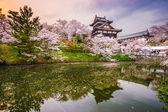 Castle in Nara Japan — Stock Photo