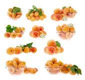 Set of apricots — Stock Photo