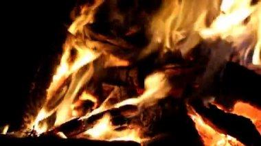 Campfire — Stock Video