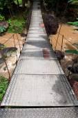 Suspension bridge in tropical forest — Stock Photo