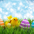 Easter eggs and chickens — Stock Photo #68846563
