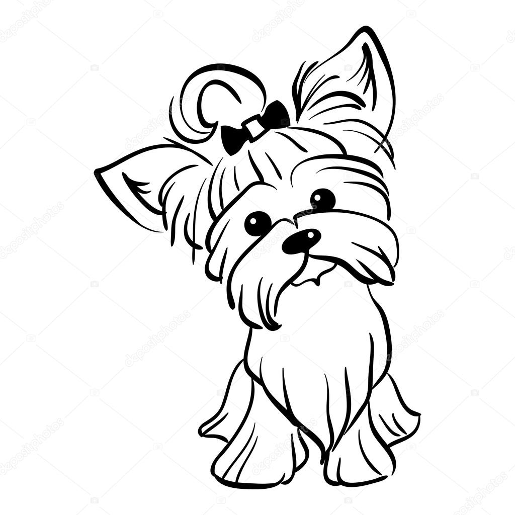 yorkie coloring page - yorkie coloring pages coloring pages