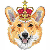 Vector sketch dog Pembroke Welsh corgi smiling in gold crown — Stock Vector