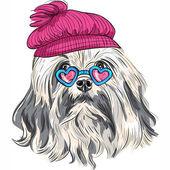 Vector funny cartoon hipster Lowchen dog — Stock Vector