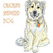Caucasian Shepherd Dog breed — Stock Vector
