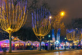 Christmas  market on the Champs Elysees in Paris at night — Stock Photo