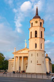 Cathedral Square and bell tower at  sundown light in Vilnius, Lithuania. — Stock Photo