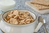 A bowl of bran flakes cereal — Stock Photo