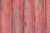 Macro texture detail — Stock Photo