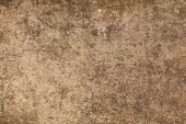 Beautiful brown wall texture  — Stock Photo