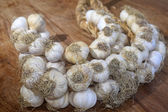String of garlic — Stock Photo