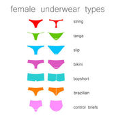 Female underwear types — Stock Vector