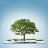 Book with grass and tree — Stock Photo