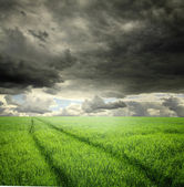 Field and stormy clouds — Stock Photo