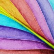 Colored leaf close-up — Stock Photo #62691407
