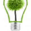 Light bulb with a plant growing inside — Stock Photo #62984039