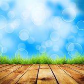 Fresh spring green grass — Stock Photo