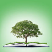 Book of nature with grass and tree — Stock Photo