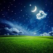 Green field under night sky — Stockfoto