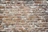 Grunge brick wall — Photo