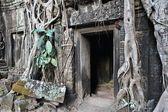 Cambodia culture — Stock Photo
