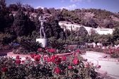 Garden in Malaga — Stock Photo