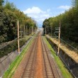 Railroad in Japan — Stock Photo #56183291
