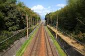 Railroad in Japan — Stock Photo