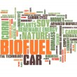 Bio fuel — Stock Photo #57158151