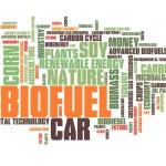 Bio fuel — Stock Photo #57158151