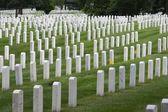 Narodowy Cmentarz w Arlington — Zdjęcie stockowe