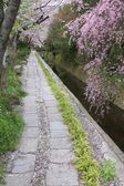 Kyoto spring — Stock Photo