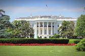 Casa branca — Fotografia Stock