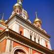 Vienna Orthodox Cathedral — Stock Photo #64554601