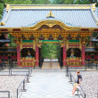 Japan - Nikko — Stock Photo #64768983