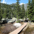 Hiking trail in Rocky Mountains — Stock Photo #67100471