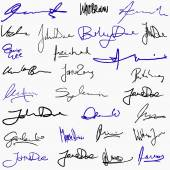 Collection of signatures — Stock Vector