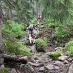 Tatry hiking — Stock Photo #73210923