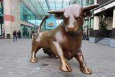 Birmingham Bull — Foto de Stock