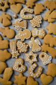Christmas cookies set — Stock Photo