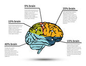 Cerebration infographic isolated — Stockvektor
