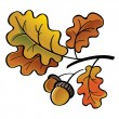 Oak leaves with acorns — Stock Vector #56896131