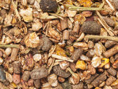 Background of sportive elite muesli for horses. macro — Stock Photo
