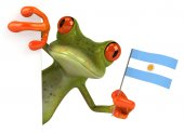 Fun frog with flag of Argentina — Stock Photo