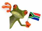 Fun frog with flag of Africa — Stock Photo