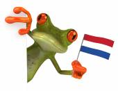Fun frog with flag of Netherlands — Stock Photo