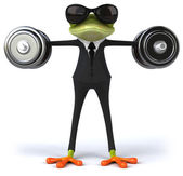 Fun frog with weights — Stock Photo