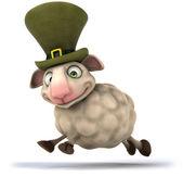 Fun Irish sheep — Stock Photo